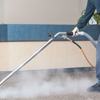 3 Reasons Why Professional Steam Cleaning is Important for Your Health