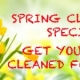 SPRING CLEANING SPECIAL: GET YOUR RUG CLEANED FOR FREE